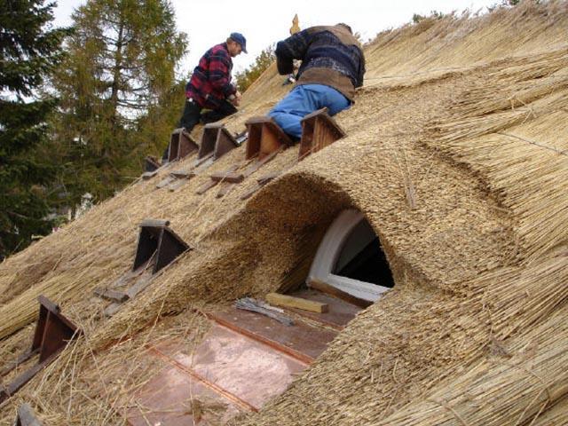 Unserer Reetdachdecker auf dem Dach
