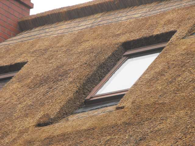 Dachflächenfenster im Reetdach